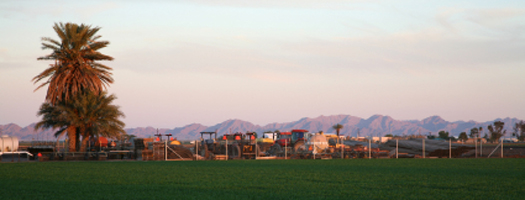 City of Somerton, Arizona
